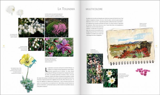 MP-pages24-25